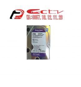 HDD WD Purple 2TB WD20PURZ, HDD WD, HDD WD Purple 2TB