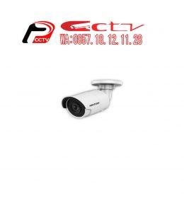IP Kamera DS-2CD2043G0, Hikvision DS-2CD2043G0, Kamera Cctv Tegal, Hikvision Tegal, Security Alarm Systems Tegal, Jual Kamera Cctv Tegal, Alarm Security Tegal